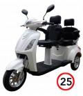 Elektromobil für Senioren VITA CARE 2000